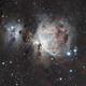 M 42 Orion Nebula,                                Michael Timm