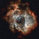NGC 2237 - Rosette Nebula RGB,                                SerAlbi