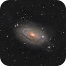 M 63 Sunflower Galaxy,                                Elmiko