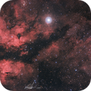 IC1318   Schmetterlingsnebel    γ-Cygni-Nebel   Butterfly Nebula,                                Christian Kanhäußer