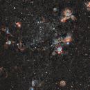 NGC 2020 - Sadr Chili,                                Julien Bourdette