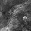 4 Panel Cygnus Impression,                                G400