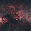 Cygnus widefield mosaic,                                David