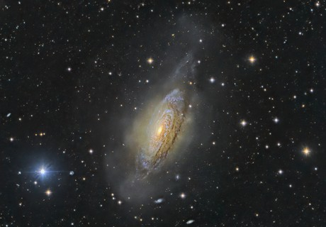 NGC 3521 A Galaxy and its Cloud -- Best Viewed Enlarged!,                                Alex Woronow