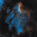 Pelican Nebula (IC 5070 and IC 5067) - SHO,                                dswtan