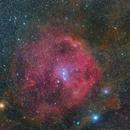 Sh2-264 Angelfish Nebula,                                ggt