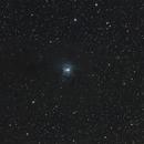 NGC 7023 Iris,                                Audrius