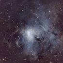 NGC1491 Hubble Palette,                                Timgilliland