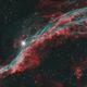 Western Veil Nebula,                                ebomber