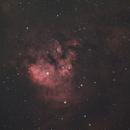 NGC 7822 (ZWO ASI533MC Pro),                                Trevor Jones