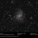 SN2017eaw in NGC6946,                                Cedric Raguenaud