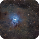 Iris Nebula (NGC 7023),                                Miles Zhou