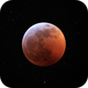 Eclipse with Stars,                                Michael Southam