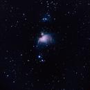 M42 Orion Nebula,                                Craine