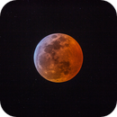 2019 Lunar Eclipse,                                Matt Harbison