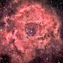 NGC2237 Rosetta,                                federico lavarino