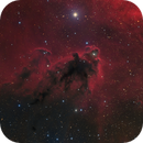 LDN1622 The Bogeyman Nebula,                                Barry Wilson