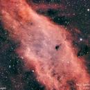 NGC 1499 California Nebula #1,                                Molly Wakeling