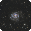 M101 2019,                                Rudolf Bumm