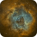 NGC2244 (Ha/sG/OIII) with DSLR,                                Arno Rottal