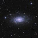 NGC 2403 Spiral Galaxy @ Fullmoon,                                Gebhard Maurer