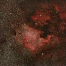 Zona NGC7000,                                Pedro Asunción