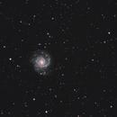 M74,                                Marko R.