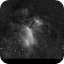Prawn Nebula (IC 4628, Ha version) - QHY163M First Light,                                Eduardo Oliveira