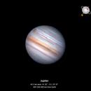 First Jupiter 2021,                                MAILLARD
