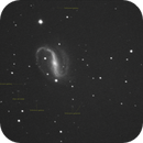 NGC7479 galaxy unguided.,                                Juan Pablo (Obser...