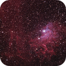 IC405 The Flaming Star Nebula,                                Phil Hosey