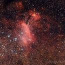 IC4628,                                Nicola Montecchiari