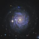 Sliced Onion Galaxy NGC 3344,                                Morris Yoder