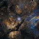 Autour de gamma du Cygne,                                Walliang Jacques