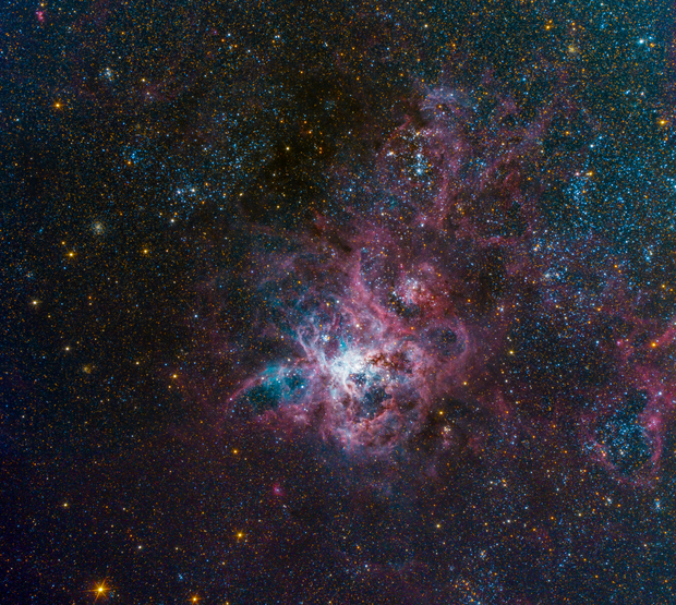 Tarantula Nebula,                                Colin