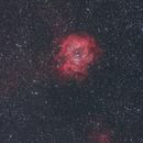 Rosette Nebula (NGC2237),                                CGPhotography