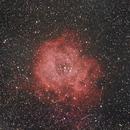 The Rosette Nebula,                                Martin Lysomirski