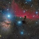 IC 434 - The Horsehead Nebula and Friends,                                Frank Breslawski