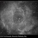 NGC 2237, Rosette Nebula, Hα False Color Animation,                                David Dearden