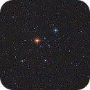 Stephenson 1,                                ursus