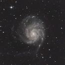 Pinwheel Galaxy,                                Rodney Hatchett