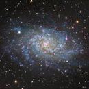 M33 The Triangulum Galaxy,                                Dyno05