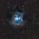 Iris Nebula,                                Ron Machisen