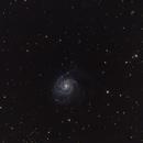 M101,                                Mark Randall Byland