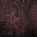 IC 1396 - The Elephant Trunk Nebula,                                James Basile