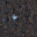 NGC 7023,                                Mario Zauner