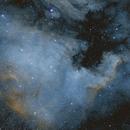 NGC 7000,                                Michael Völker