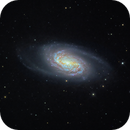 NGC2903 - A Field barred spiral galaxy in Leo,                                jlangston_astro