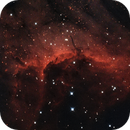 IC 5067 in the Pelican Nebula,                                Richard Cardoe