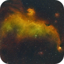 IC 2177 Seagull Nebula fleeing the Redcat,                                Chris Hunt